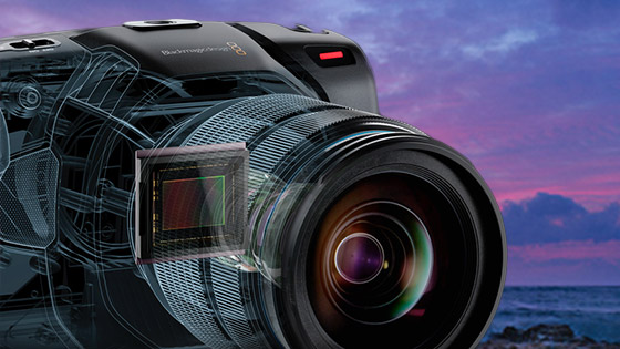 blackmagic pocket camera update 6.1