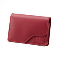 Red Leather Carrying Case-DSC-W35 W